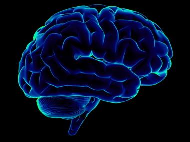 Мозг личности